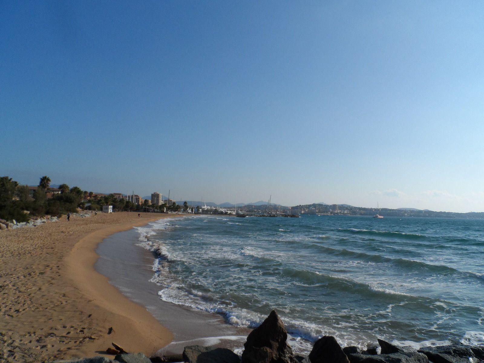 Balade sur la plage.