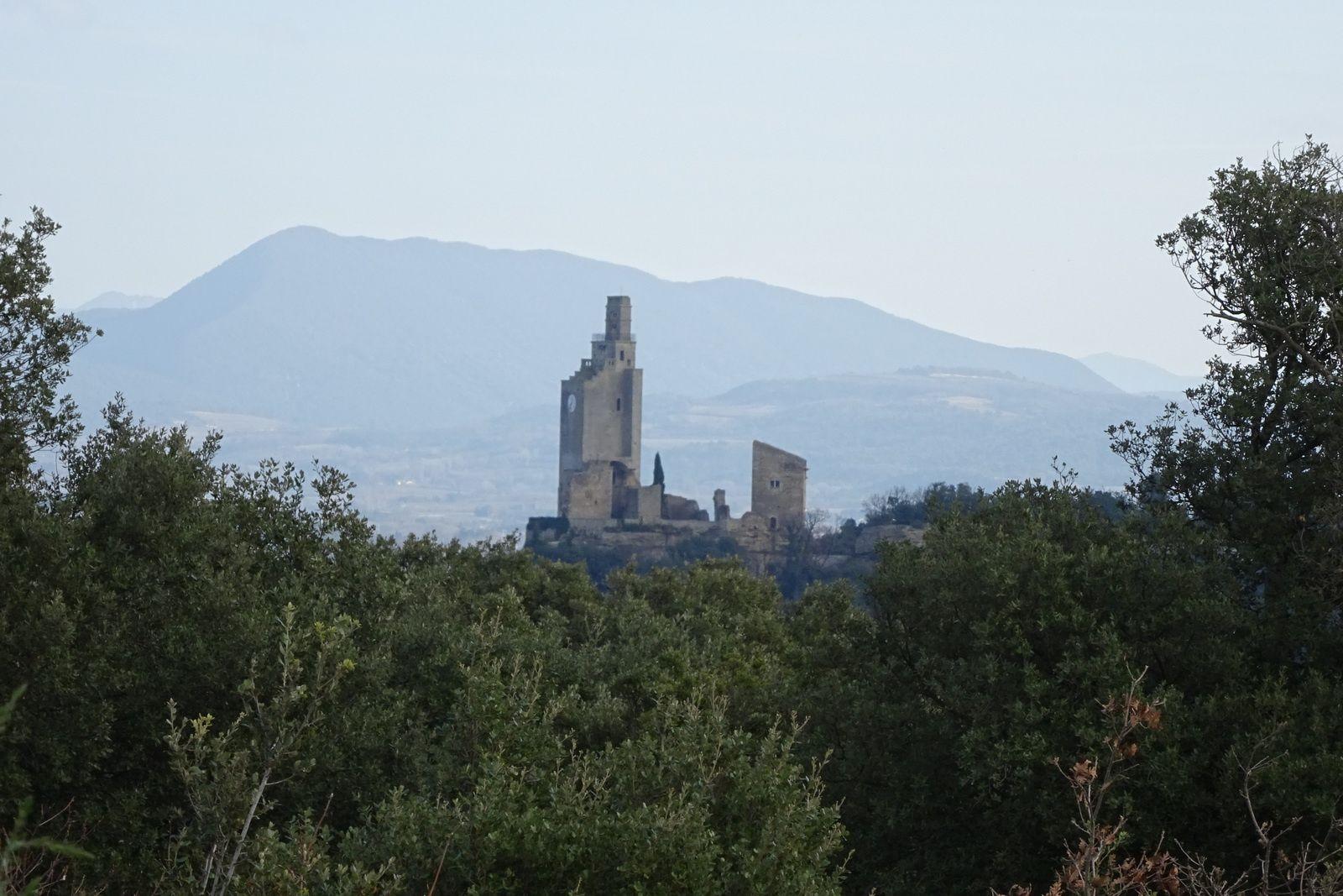 Entre deux bouquets d'arbres on aperçoit les tours de Montségur sur Lauzon.