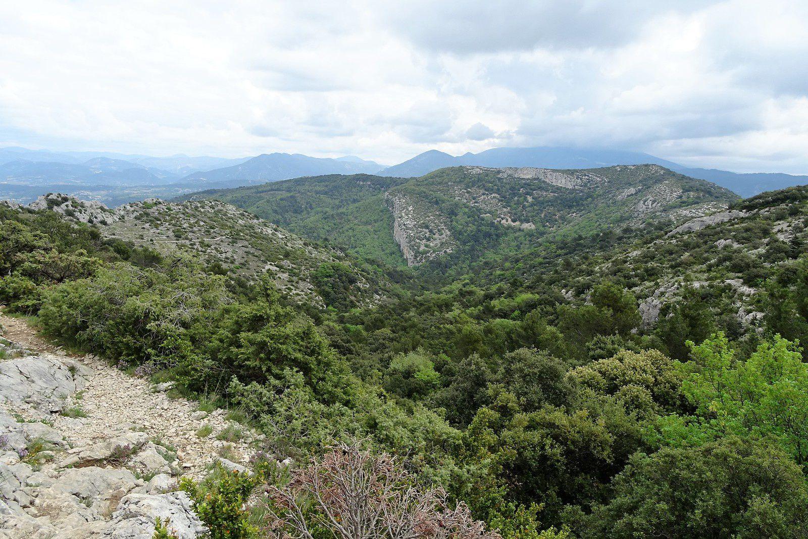Vue magnifique sur les monts du Vaucluse.