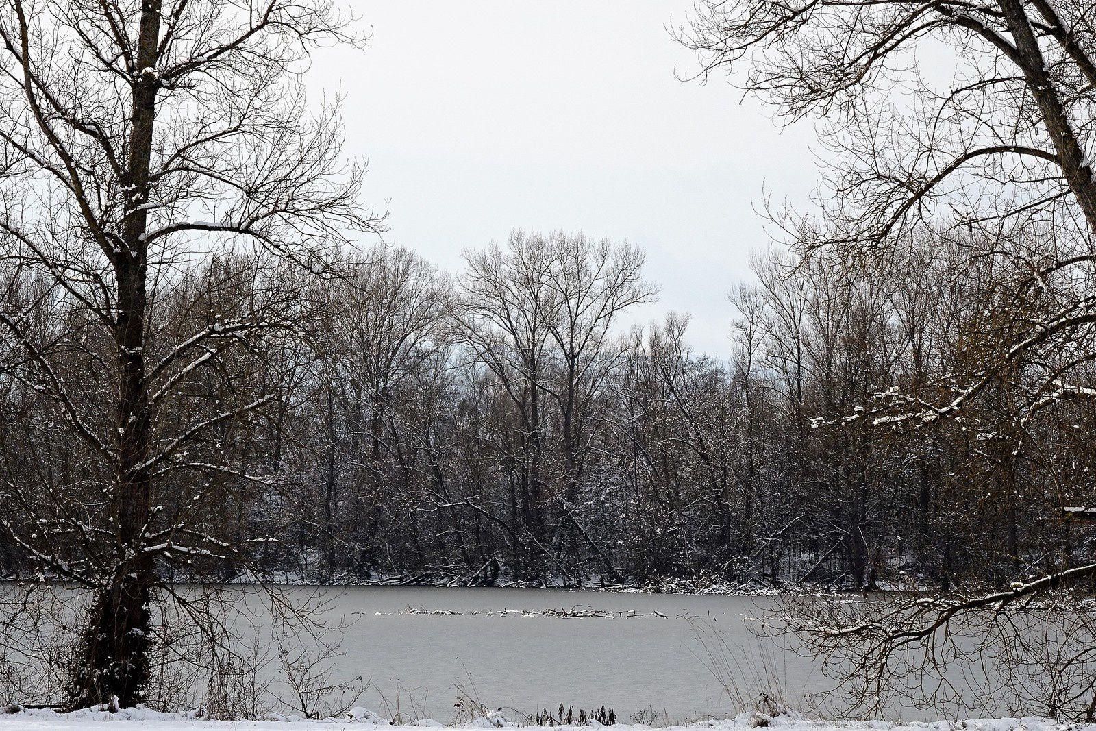 Les étangs sont gelés.