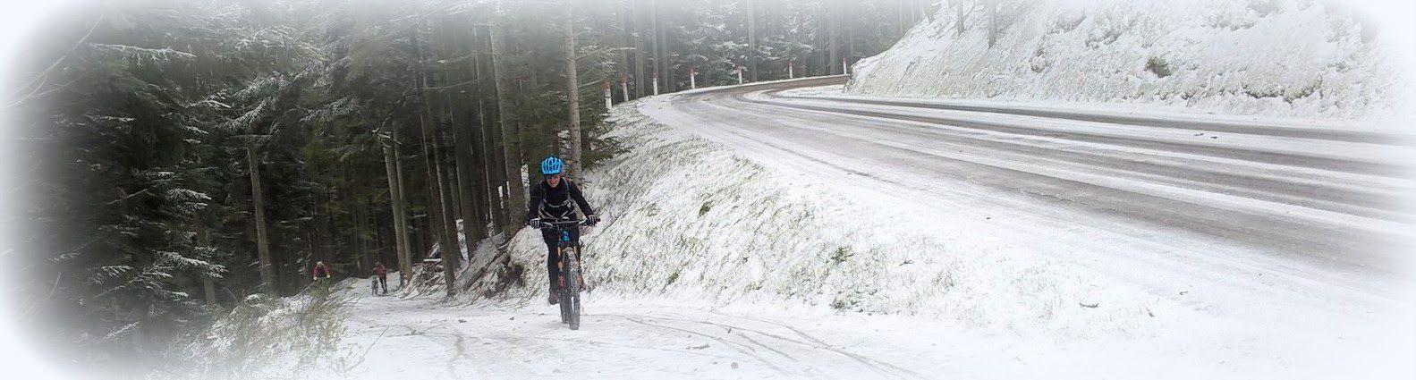 Nous arrivons au col de Baraques, la neige est de plus en plus épaisse. 3 d'entre nous décident de rallier le prochain gîte par la route.