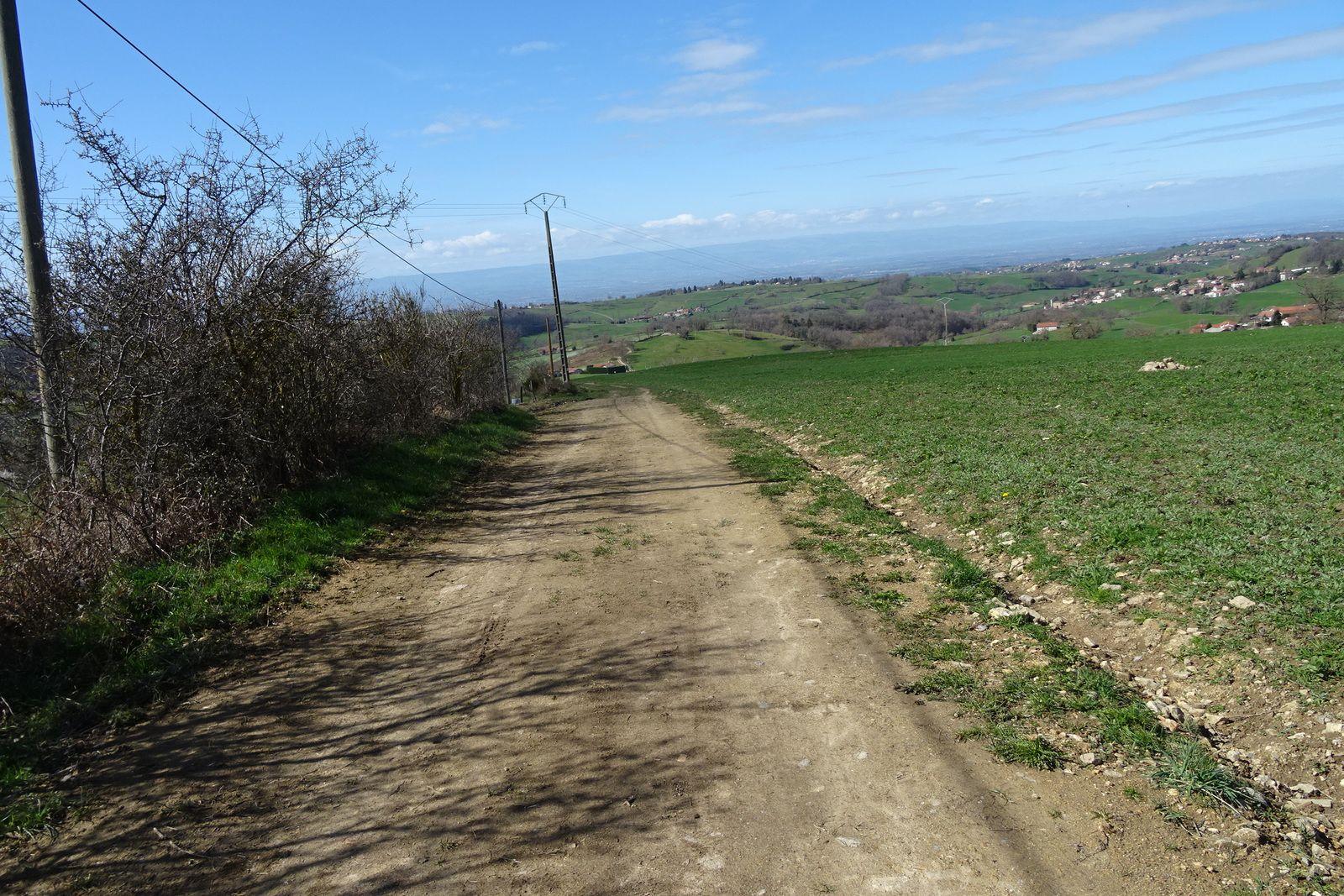 Le sentier qui remonte à Fontanès a été nivelé, plus de challenge dans les cailloux, mis à part la pente aucune difficulté. Je me ravitaille à la table d'orientation.