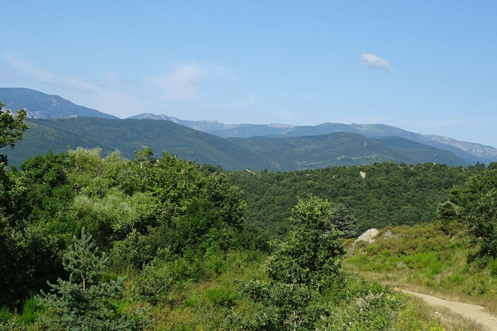 On grimpera jusqu'à 1110 mètres, ce qui est bien pour la région.