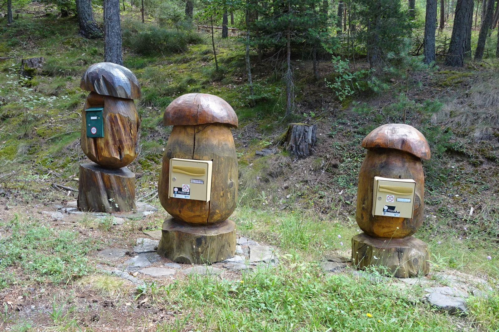 Étranges champignons ou étranges boites aux lettres ? En tous cas c'est original.
