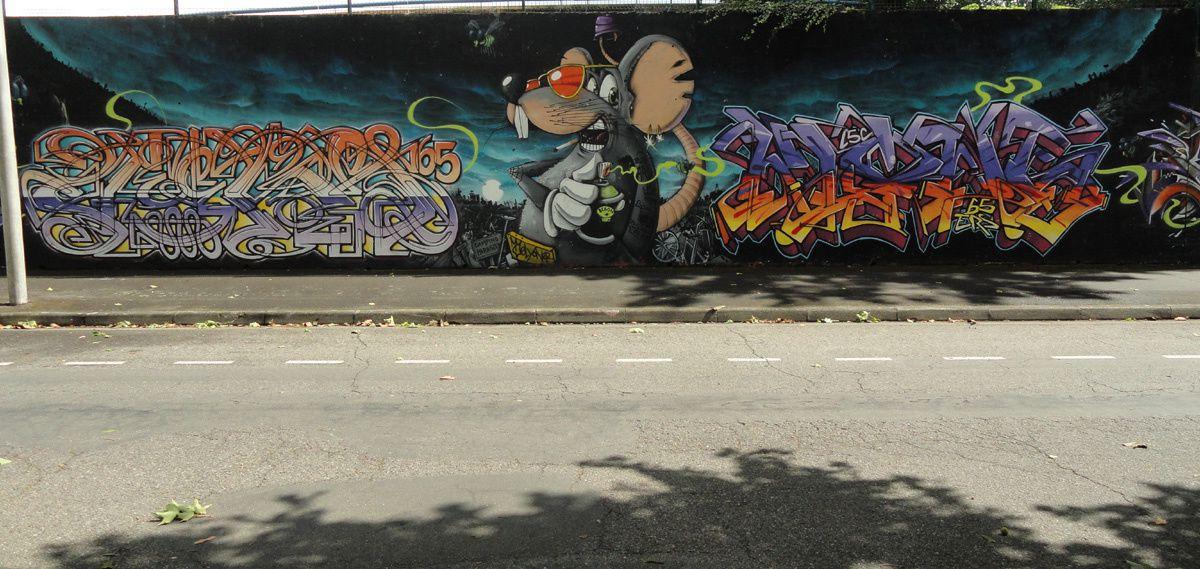 Street Art : Graffitis & Fresques Murales 65440 Tarbes