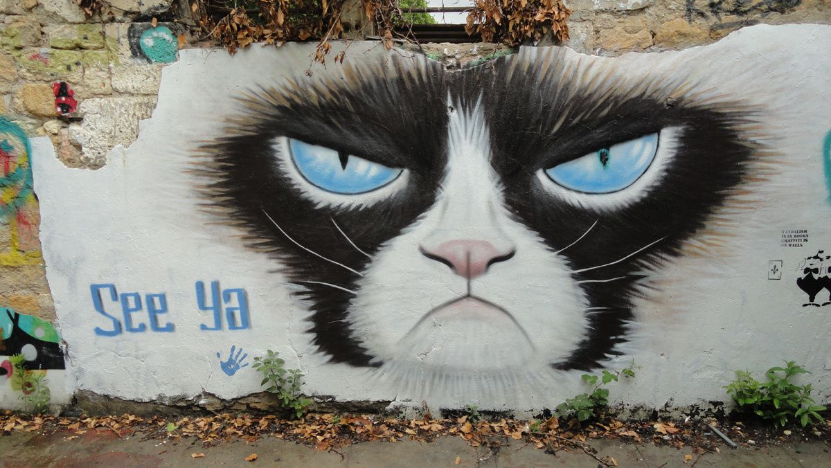 Street Art : Graffitis & Fresques Murales 33100 Bordeaux