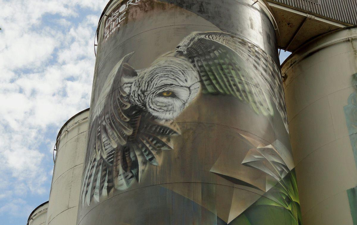 Street Art : Graffitis & Fresques Murales 5213 St.Hertogenbosch (Pays Bas)