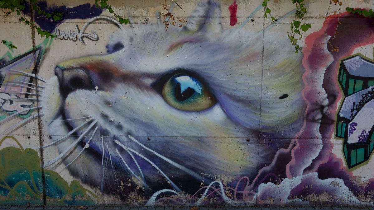 Street Art : Graffitis & Fresques Murales 08301 Mataro