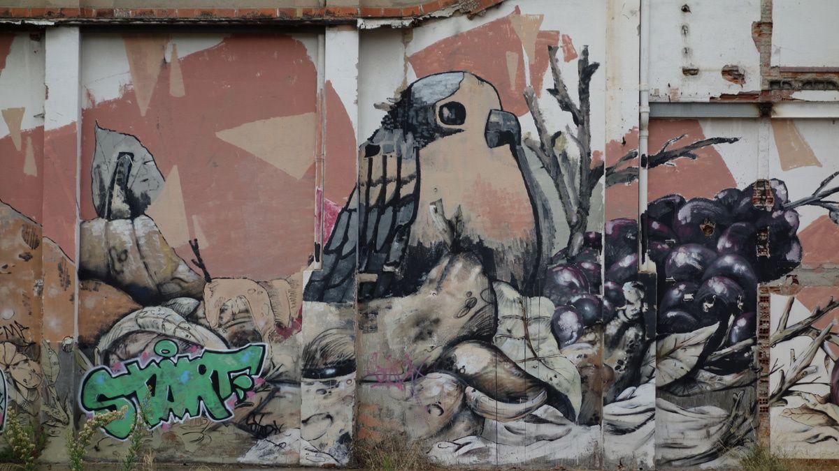 Street Art : Graffitis & Fresques Murale 08301 Mataro (Catalyuna)