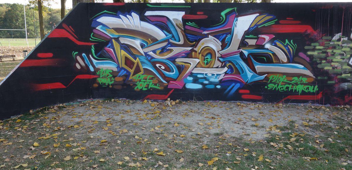 Street Art : Graffitis & Fresques Murale 77243 Lagny sur marne