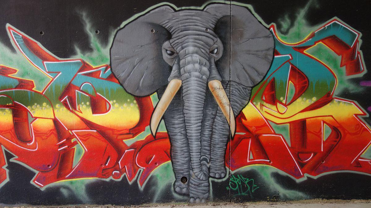 Street Art : Graffitis & Fresques Murales  91477 Palaiseau