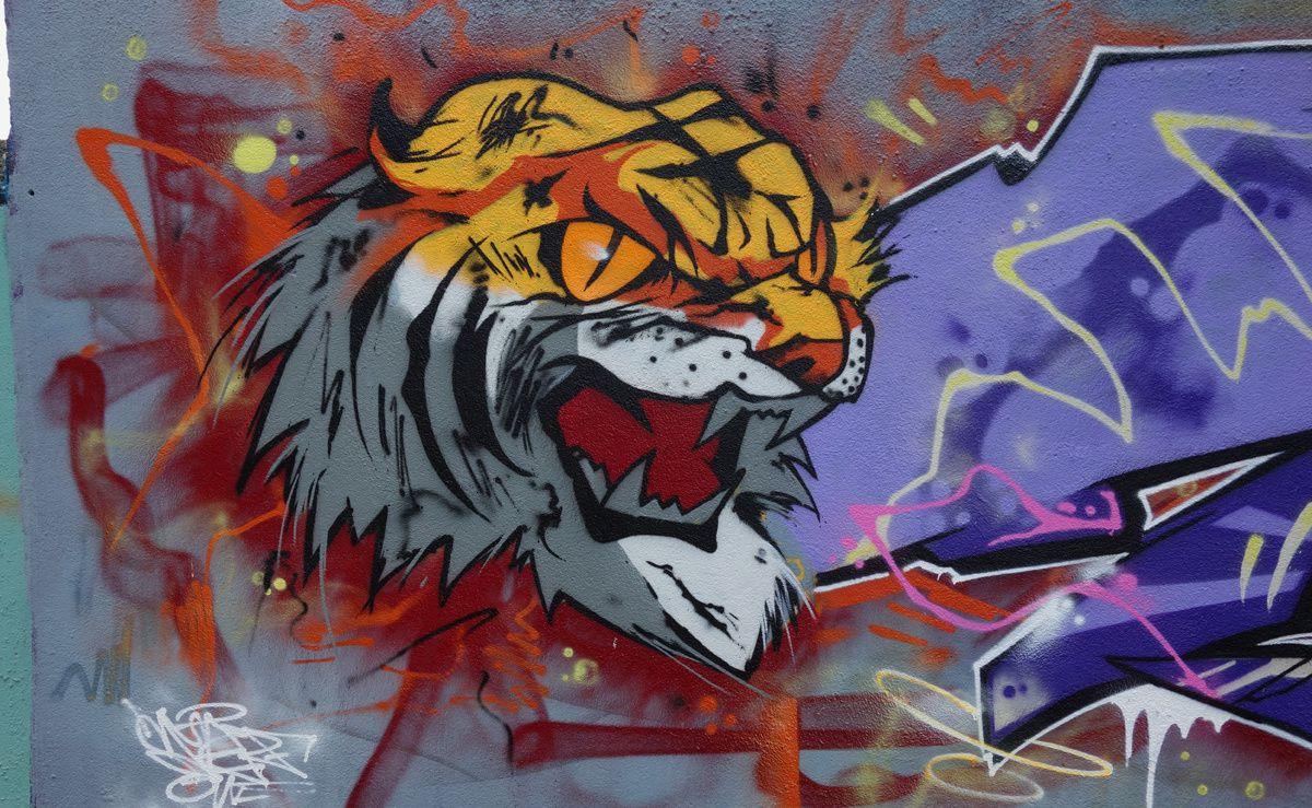 Street Art : Graffitis & Fresques Murales 44200 Nantes