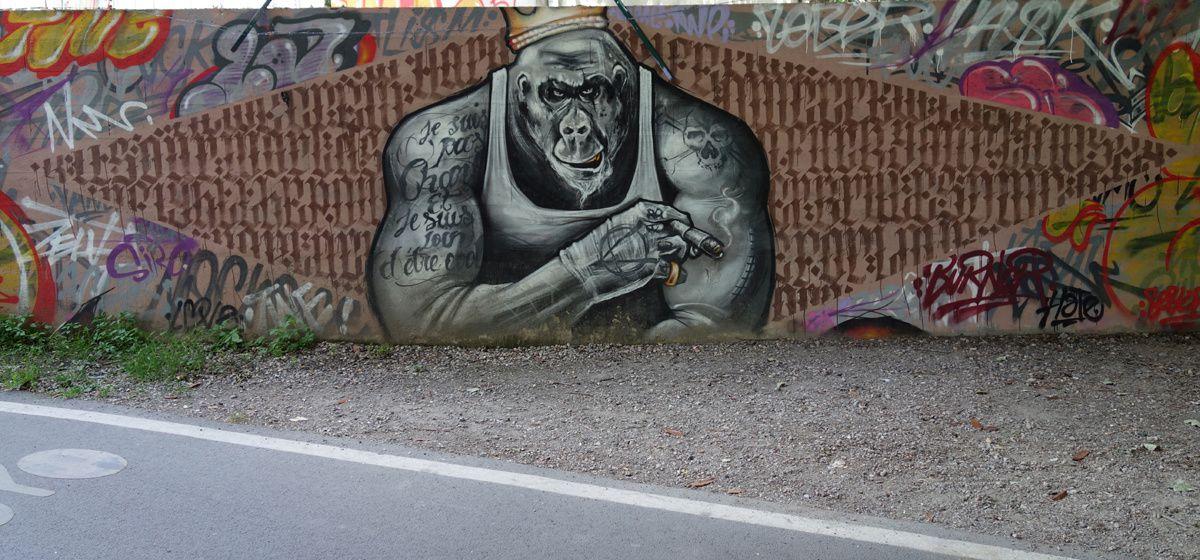 Street Art : Graffitis & Fresques Murales 93057 Les Pavillons sous Bois