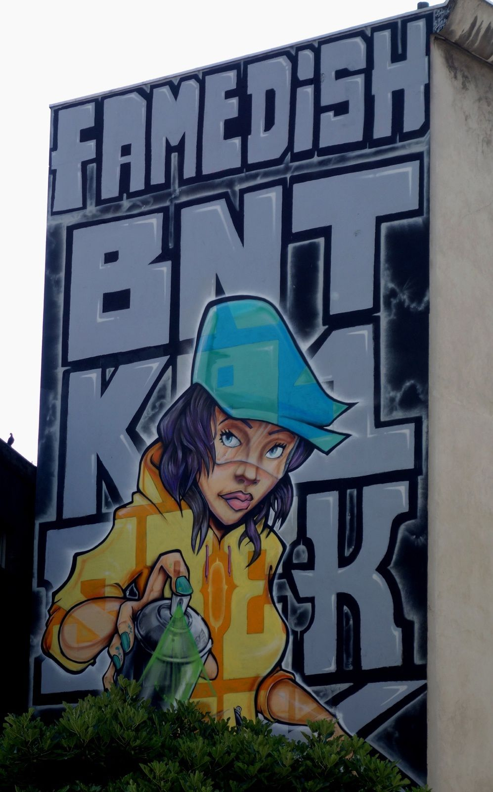 Street Art : Graffitis & Fresques Murales 38185 Grenoble