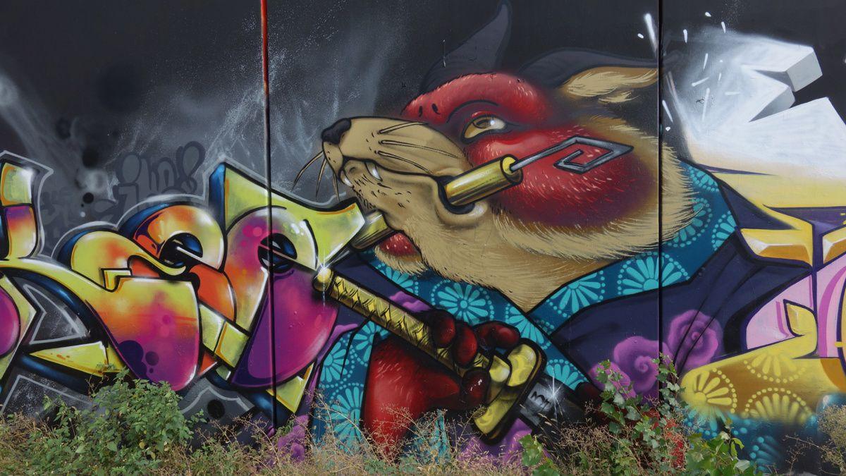Street Art : Graffitis & Fresques Murales 25030 Roncadelle ( Italy )