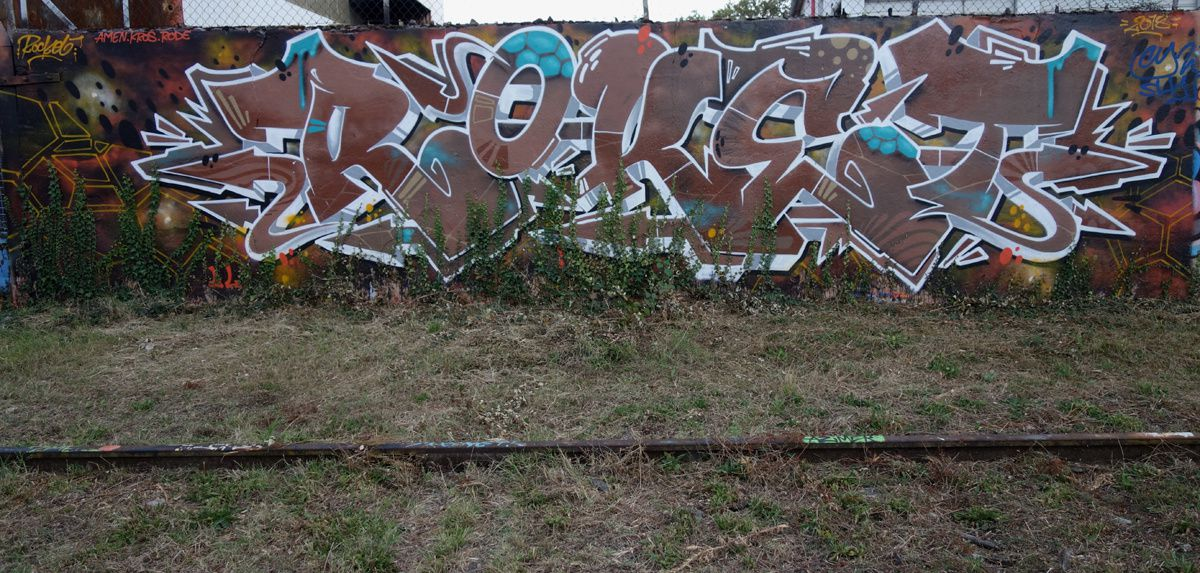 Street Art : Graffitis & Fresques Murales 73065 Chambery