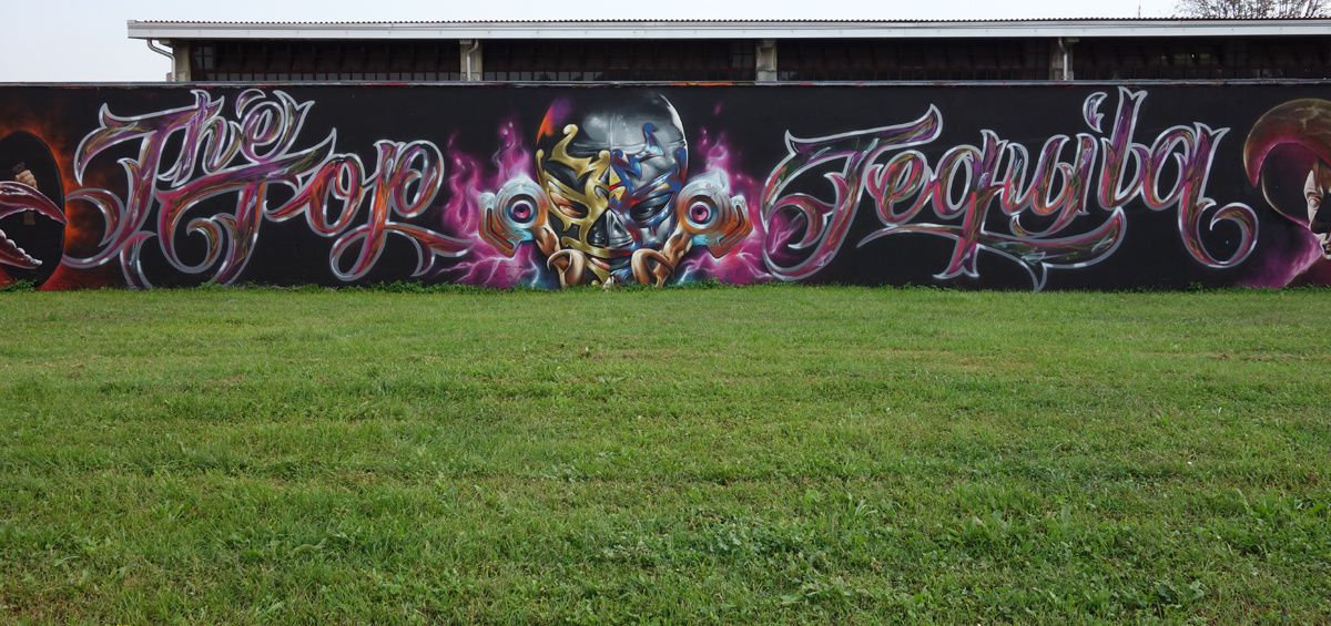 Street Art : Graffitis & Fresques Murales 20089 Rozzano ( Italy )