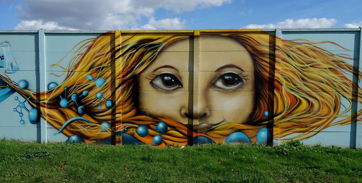 Street Art : Graffitis & Fresques Murales 93001 Aubervilliers