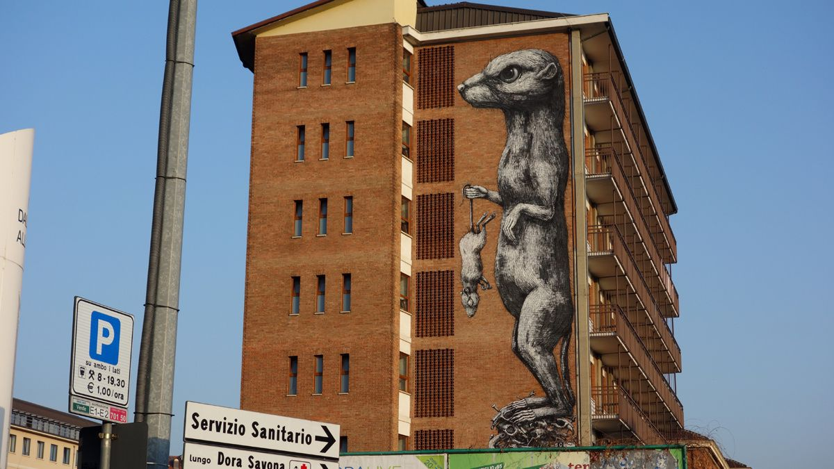Street Art : Graffitis & Fresques Murales 10152 Turino ( Italy )