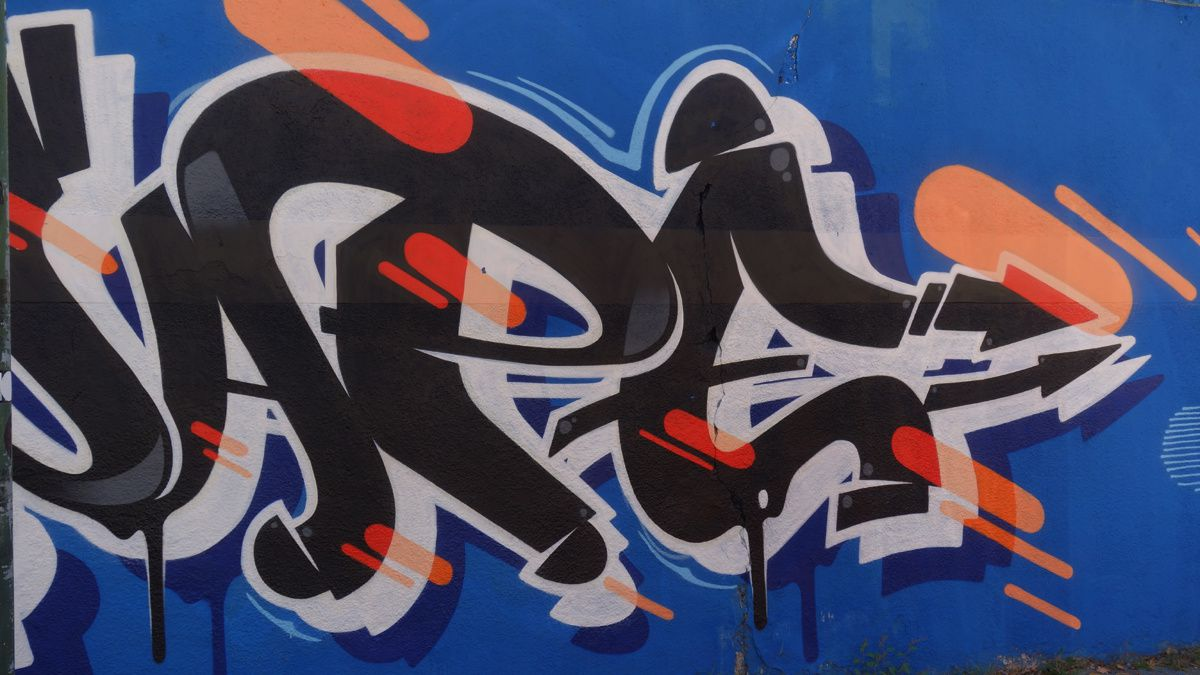 Street Art : Graffitis & Fresques Murales 10154 Turino ( Italy )