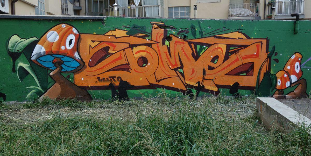 Street Art : Graffitis & Fresques Murales 10141 Turino ( Italy )