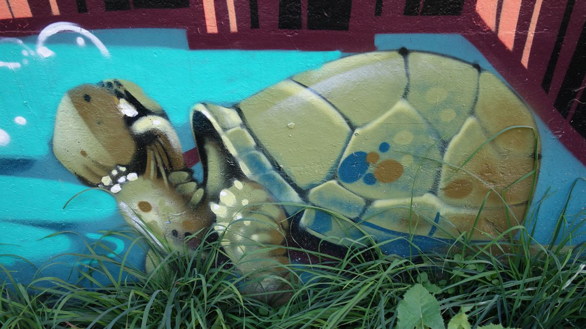 Street Art : Graffitis & Fresques Murales 10141 Turino (Italy)