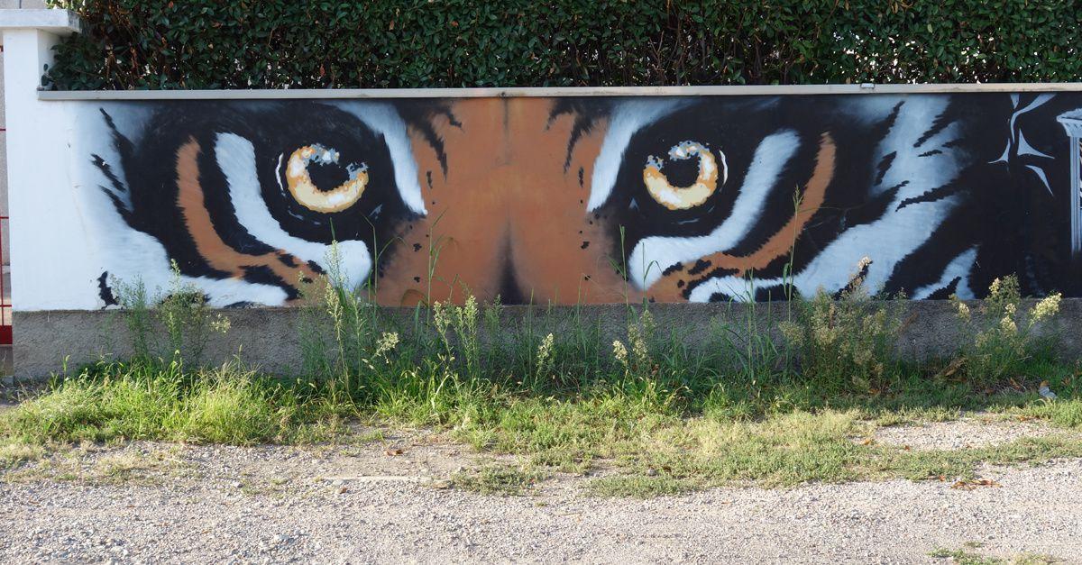 Street Art : Graffitis & Fresques Murales 20014 Nerviano (Italy)
