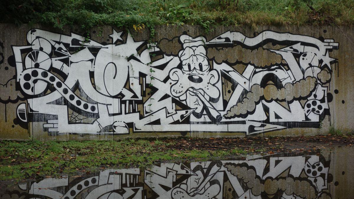 Street Art : Graffitis & Fresques Murales 9473 Denderleeuw ( Belgique )