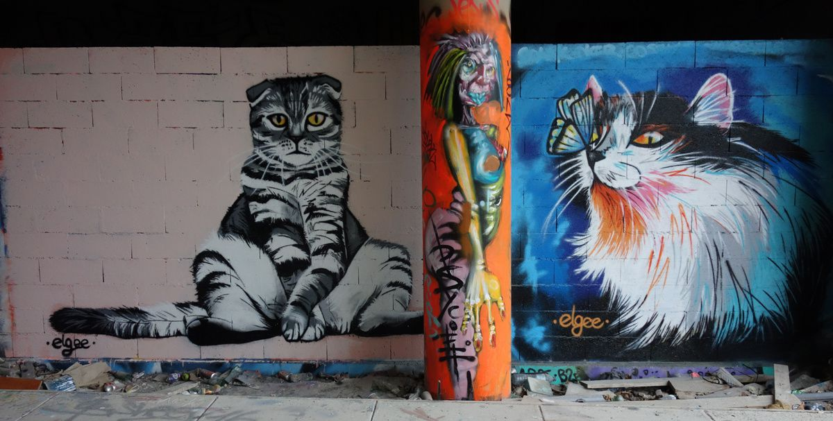 Street Art : Graffitis & Fresques Murales 78013 Paris
