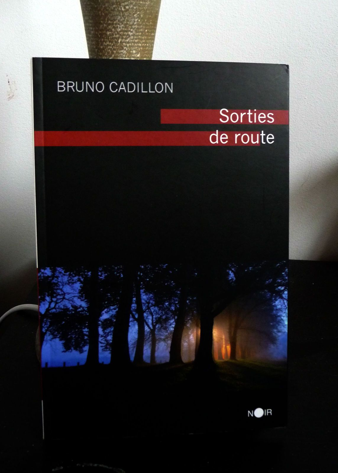 Sorties de Route - Bruno Cadillon