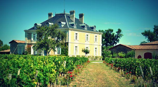 voyage Œnologique dans le vignoble alsacien
