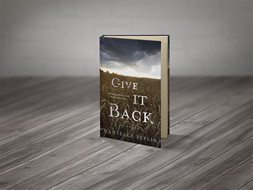 Give it back novel by Danielle splin