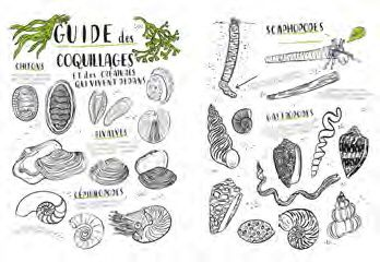 guide coloriages