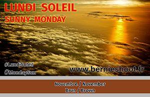brun marron lundi soleil novembre