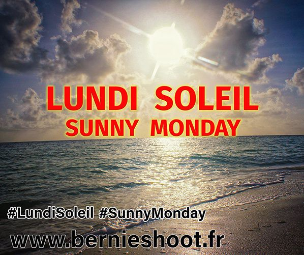lundi soleil sunny monday official  logo officiel