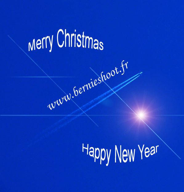 bernieshoot season greetings merry christmas happy new year