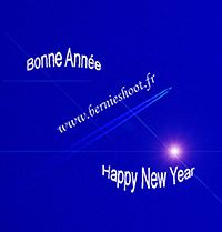 bonne anne happy new year bernieshoot