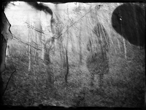 melanie patris photographe artiste get into the forest