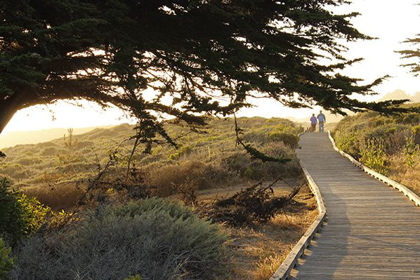 Famous for its dramatic coastline and breathtaking views, the Moonstone Beach Boardwalk is where your Cambria seaside escape begins.Photo Credit: Maryann Stansfield