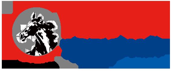 China-Workshop_logo_workshop