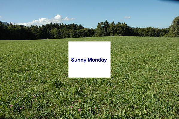couverture sunny monday blogging