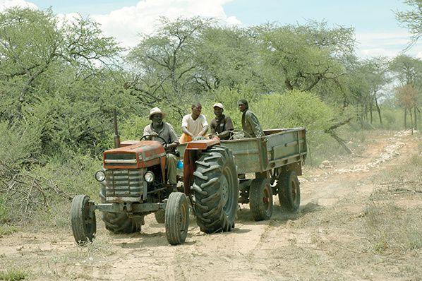 tracteur ferme tobias gunzel grossfontein namibie