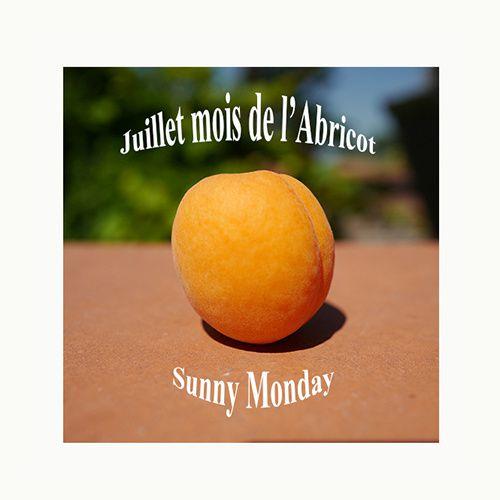 couverture juillet abricot lundi soleil sunny monday