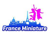 Logo ss 20 ans france miniature