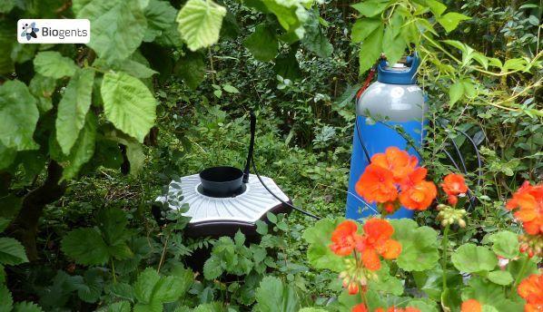 SPG_Biogents_BG_Mosquitaire_CO2_garden ©SPG BIOGENTS