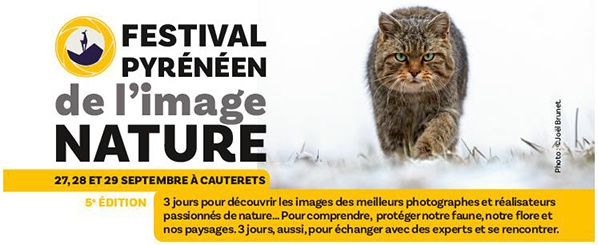 festival pyreneen image nature