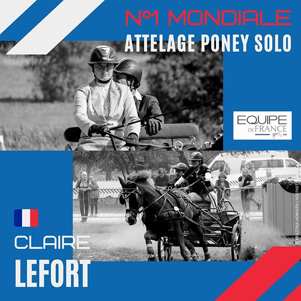 photo montage claire lefort N° 1