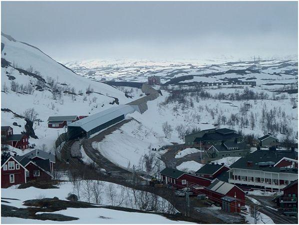 ski suede
