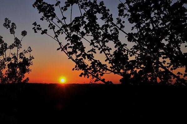 lever de soleil gaillac toulza