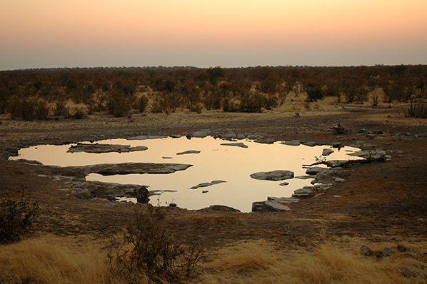 point eau etosha namibie